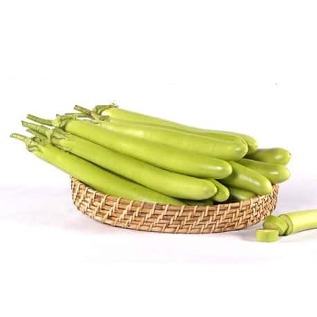 brinjal-green